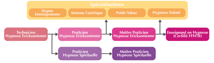 Organigramme formation hypnose Lille