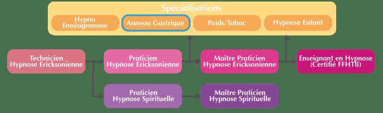 formation anneau gastrique hypnotique organigramme