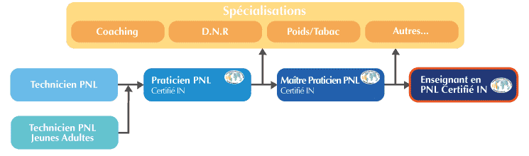 Formation Enseignant PNL Organigramme