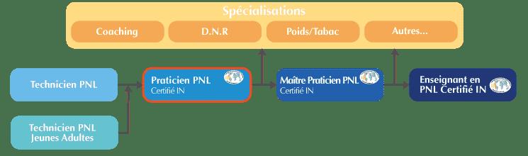 Formation Praticien PNL Organigramme