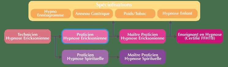 Formation Praticien Hypnose Organigramme