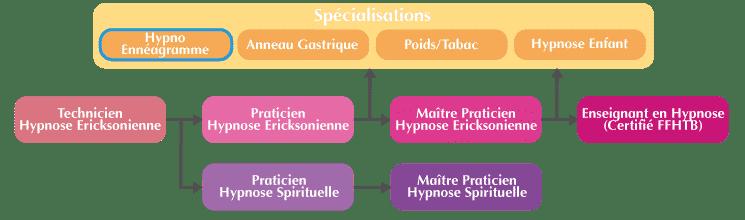 Formation Hypno-Ennéagramme Organigramme