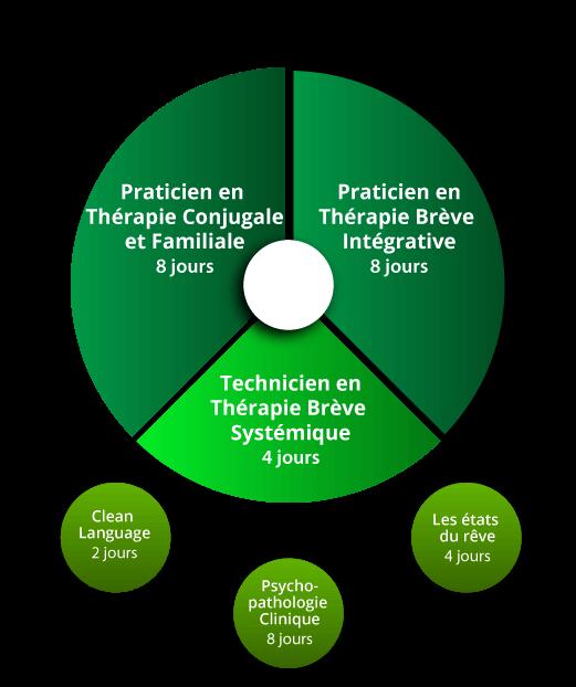 Praticien Thérapie Brève Intégrative