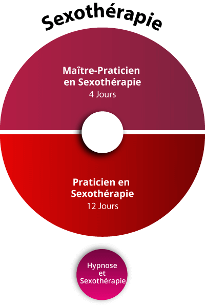 Formations Thérapies Brèves sexotherapie